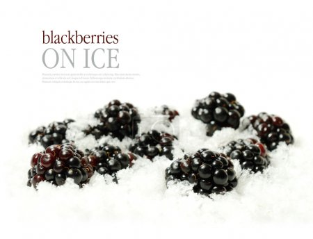 Blackberries on ice