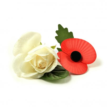 White Rose And Remembrance Poppy