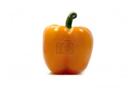 One orange bell pepper
