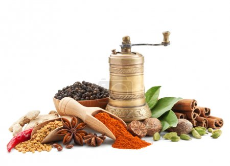Spices and herbs isolated on white background...