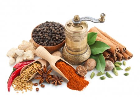 Photo for Composition with different spices and herbs isolated on white background - Royalty Free Image