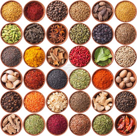 Photo for Collection of different spices and herbs isolated on white background - Royalty Free Image