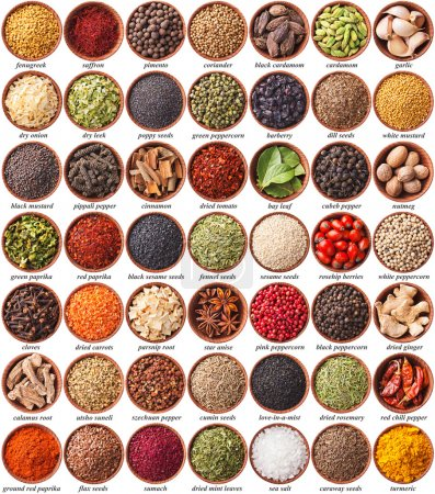 Photo for Large collection of different spices and herbs with labels - Royalty Free Image