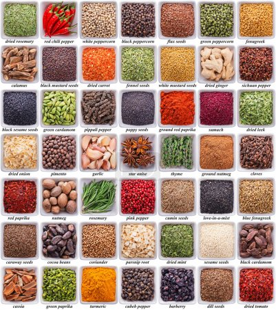 Photo for Large collection of different spices and herbs isolated on white background - Royalty Free Image