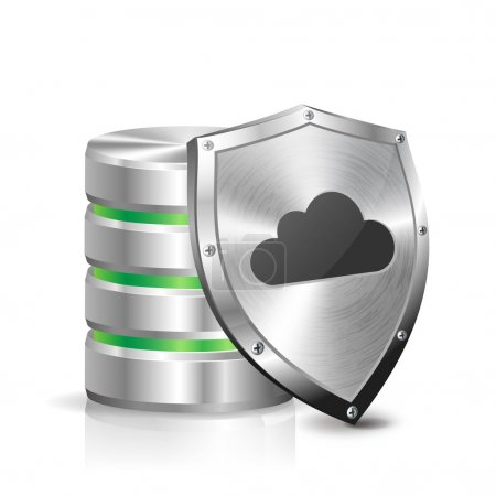 Database and security metal shield