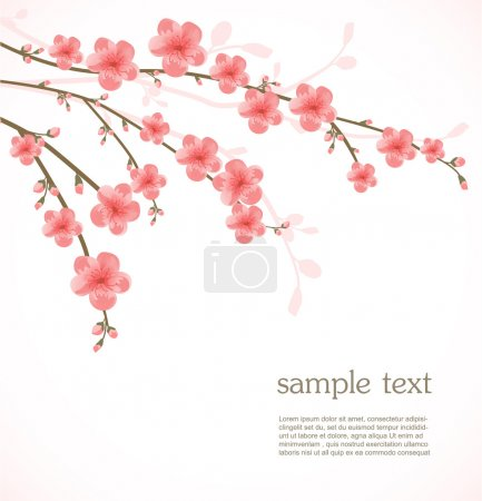 Illustration for Cherry blossom card - Royalty Free Image