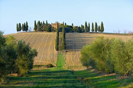 Landscape in tuscany.