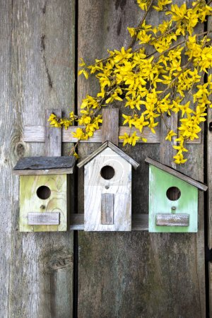 Birdhouse on old wooden fence