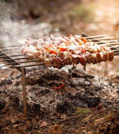 Photo pour Photo de gros plan de kebab sur le feu à la forêt - image libre de droit
