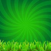 Beams And Green Grass