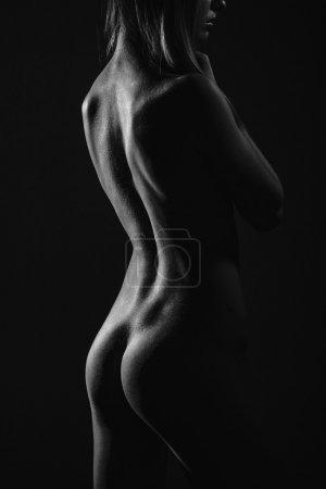 Body curves of female