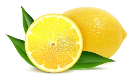 Illustration for Vector illustration of fresh lemons with leaves - Royalty Free Image