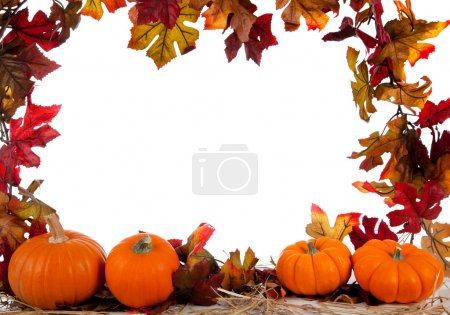 Photo for Border of Assorted sizes of pumpkins with hay on a white background with fall leaves - Royalty Free Image