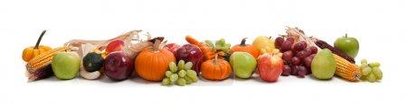 Foto de Un arreglo de otoño frutas y verduras - Imagen libre de derechos
