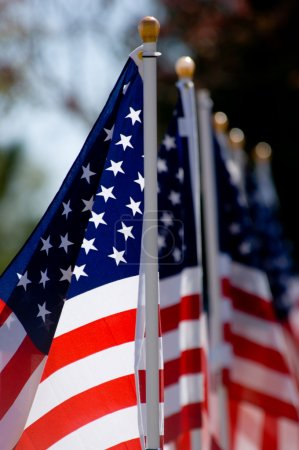American Flag Display for Holiday