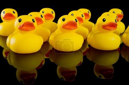 Photo pour Canards en caoutchouc jaune en rangées sur un fond noir, le thème de la conformité - image libre de droit