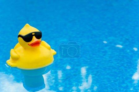 Photo pour Canard en caoutchouc jaune avec des nuances sur l'eau bleue, espace pour la copie - image libre de droit