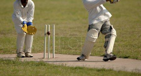 English Cricket Match