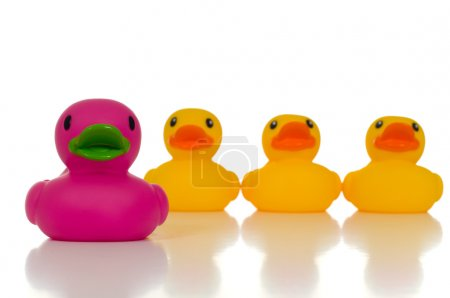 Photo for A pink rubber duck leading a group of yellow rubber ducks signifying that leaders must be unique and stand out from the crowd - Royalty Free Image