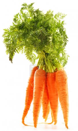 Photo for Fresh carrots bunch isolated on white background - Royalty Free Image