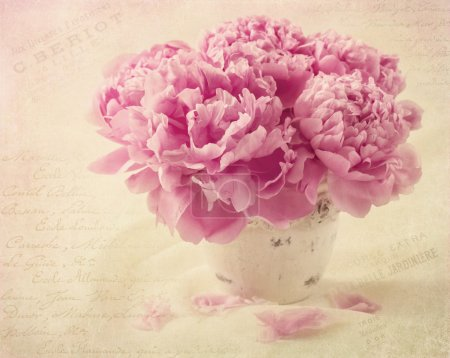 Photo for Peony flowers in a vase - Royalty Free Image