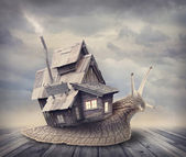 Snail house