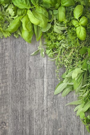 Fresh herbs over grey wooden