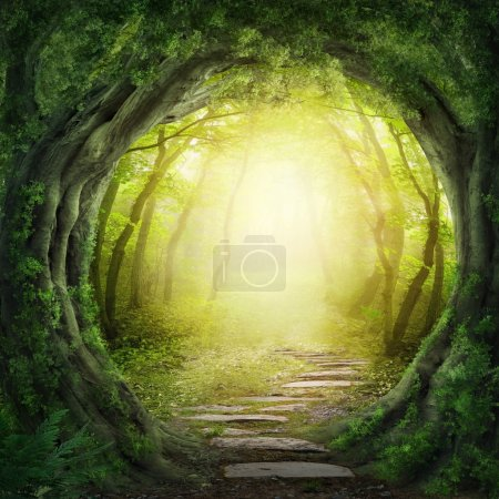 Photo for Road in magic dark forest - Royalty Free Image
