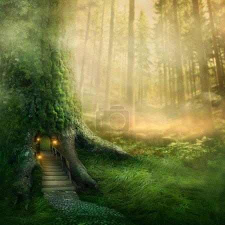 Photo pour Fantastique maison dans les arbres en forêt - image libre de droit