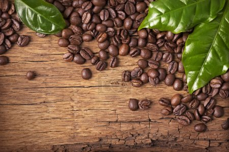 Photo for Coffee beans and green leaves on wooden background - Royalty Free Image