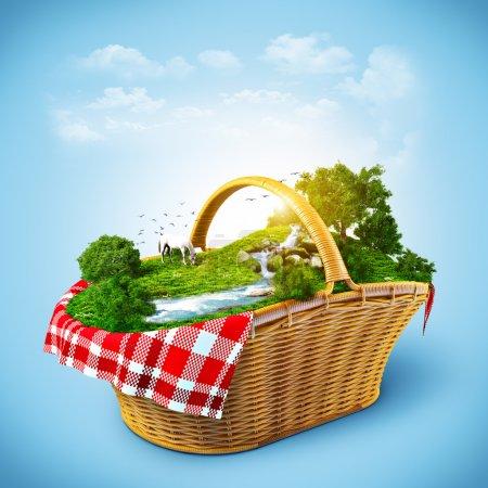 Foto de Hermosa naturaleza en la cesta. descansar fuera de la ciudad - Imagen libre de derechos