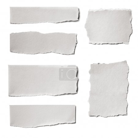 Photo for Collection of white paper tears, isolated on white with soft shadows. - Royalty Free Image