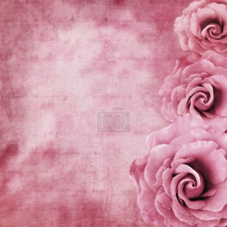 Grunge Roses Background
