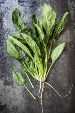 Spinach on Slate Overhead View