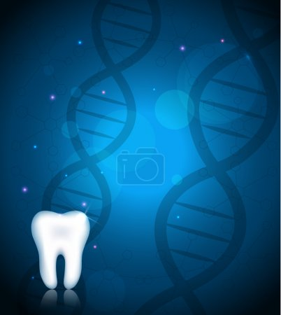 Tooth and DNA
