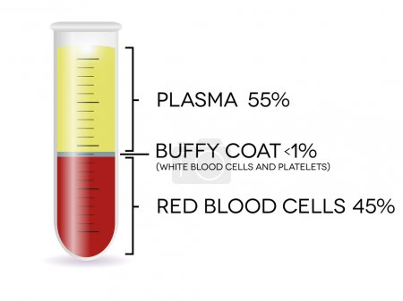 Test tube with blood cells