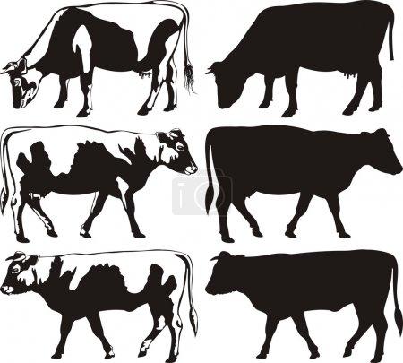 Illustration pour Icône animaux de ferme, silhouettes de bovins - image libre de droit