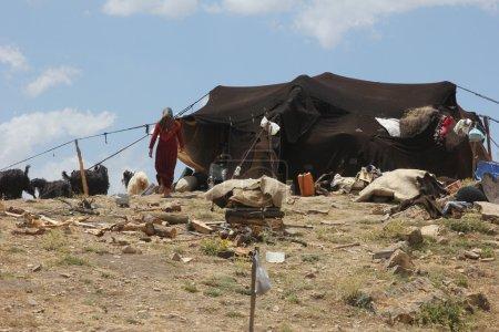 Nomad's tent