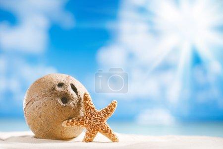 Photo pour Noix de coco avec océan, plage et paysage marin, dof peu profond - image libre de droit
