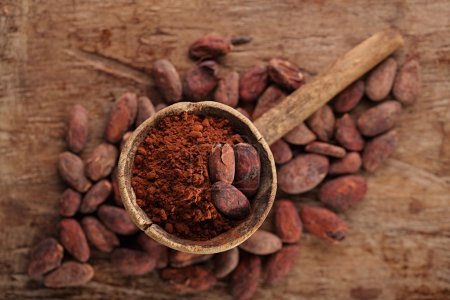 Photo for Cocoa powder in spoon on roasted cocoa chocolate beans background - Royalty Free Image