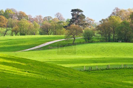 Photo for A rural landscape of green farm fields and country hillsides - Royalty Free Image