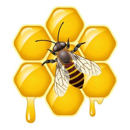 Illustration pour Vecteur de travail abeille sur les cellules mielleuses - image libre de droit