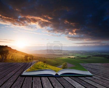Photo pour Image composite créative du paysage estival en pages de livre magique - image libre de droit