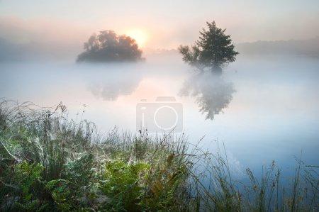 Photo pour Brouillard brouillard landscpae sur le lac à l'automne automne avec des couleurs vives - image libre de droit