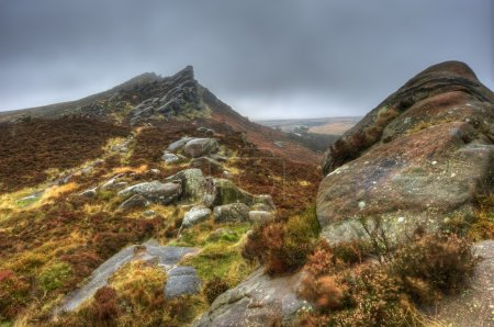 Photo for Ramshaw Rocks in Peak District National Park on foggy Autumn day - Royalty Free Image