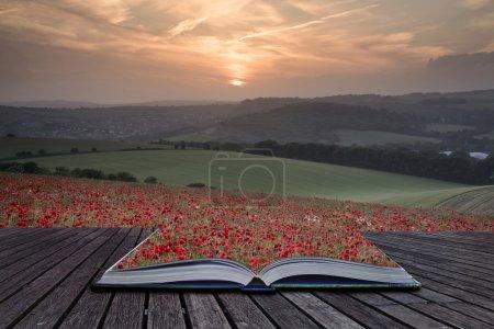 Photo pour Pages de concept créatif du livre Belle image de paysage de champ de pavot d'été sous un ciel magnifique coucher de soleil - image libre de droit