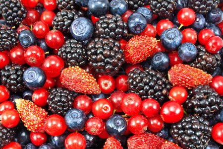 Photo for Different fresh berries as background - Royalty Free Image