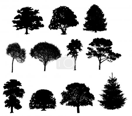 illustration vectorielle des silhouettes d'arbre