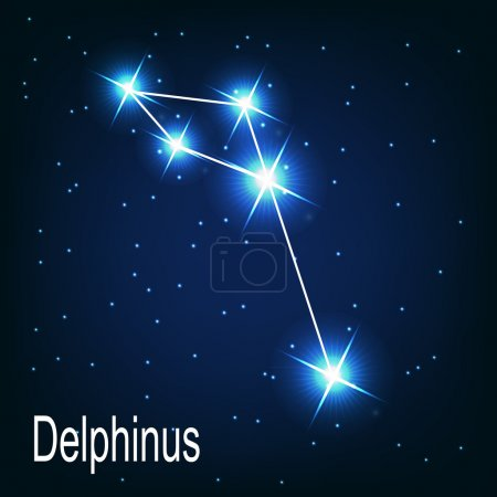 "Illustration for The constellation ""Delphinus"" star in the night sky. Vector illustration - Royalty Free Image"