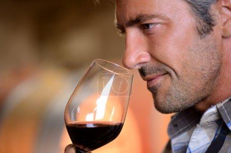 Foto de Closeup en enólogo que huele a vino tinto en vaso - Imagen libre de derechos
